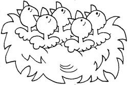 5 dans le nid