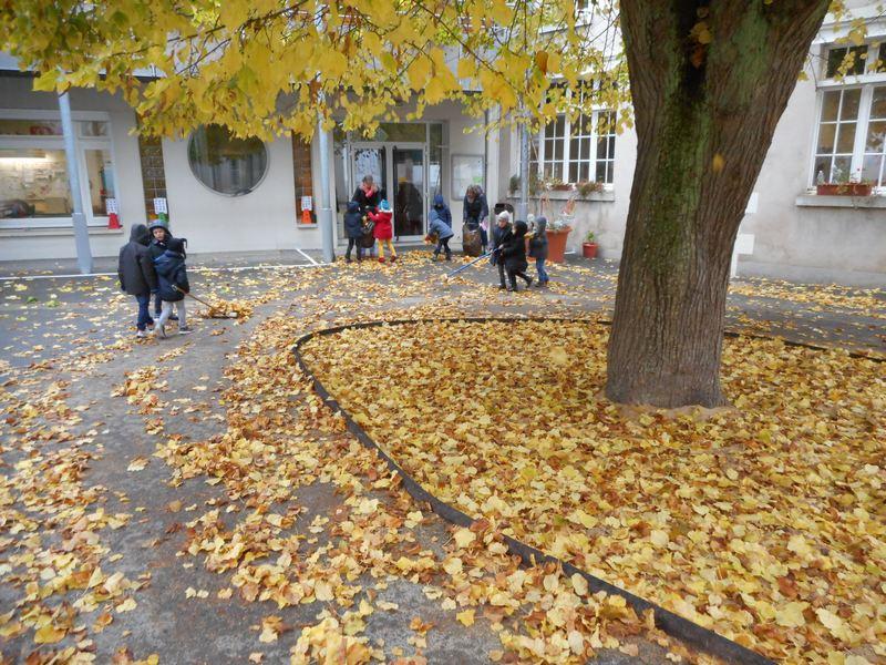 automne16-cour