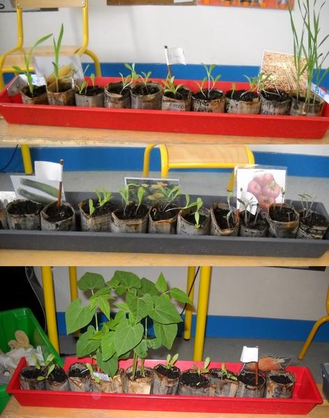 plants-14avril12